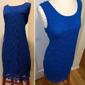 Gorgeous Royal Blue Lace Stretch sheath Dress L